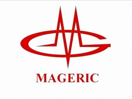 компания Mageric
