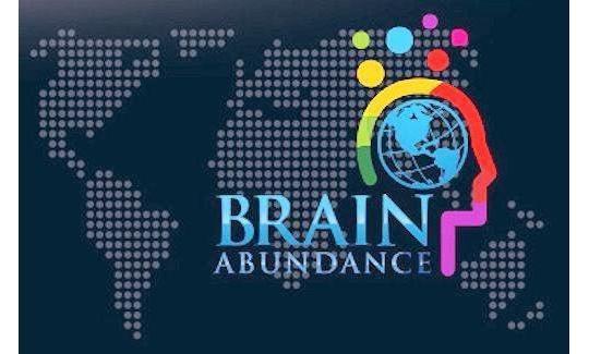 Независимые отзывы про BrainAbundance