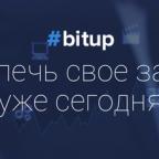 Обзор хайп проекта Bitup