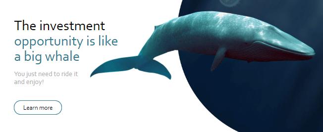 Whalesclub